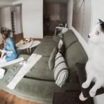 seimos-nesciosios-fotosesija-namuose-laukimas-goodlife-photography-08