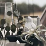 kupolai-20.06.27-goodlife-photography-25