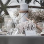 kupolai-20.07.07-goodlife-photography-21